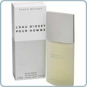 Issey Miyake L Eau D Issey Pour Homme Mens Edt 125ml At L